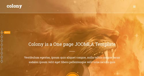 Colony Joomla Theme