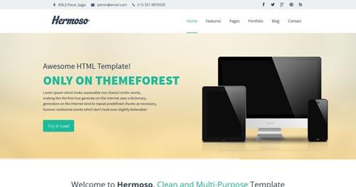 Hermoso - Business Joomla Templates