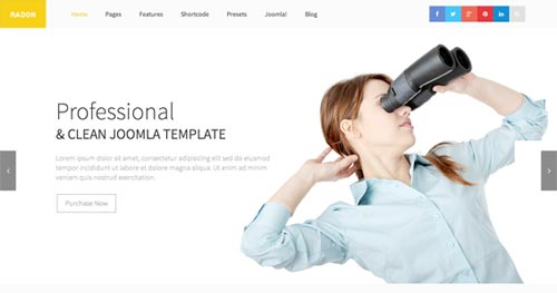 Shaper Radon - Business Joomla Templates