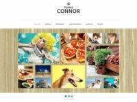 TM Connor Joomla Theme