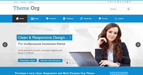 Theme-Org - Responsive Business Joomla Templates