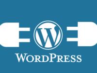 7 Beginner WordPress Mistakes in Brief